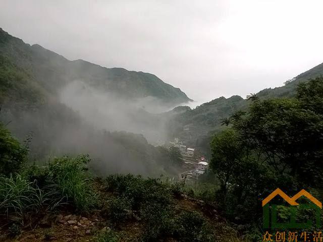 雾中的茶乡